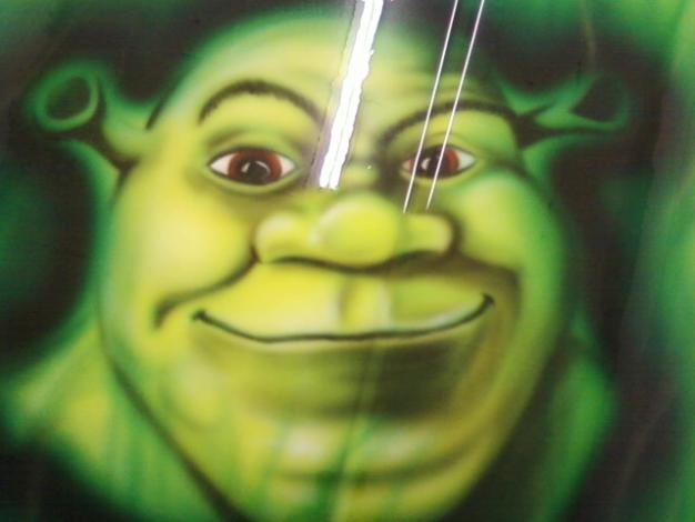 ODDS...Shrek bonnet